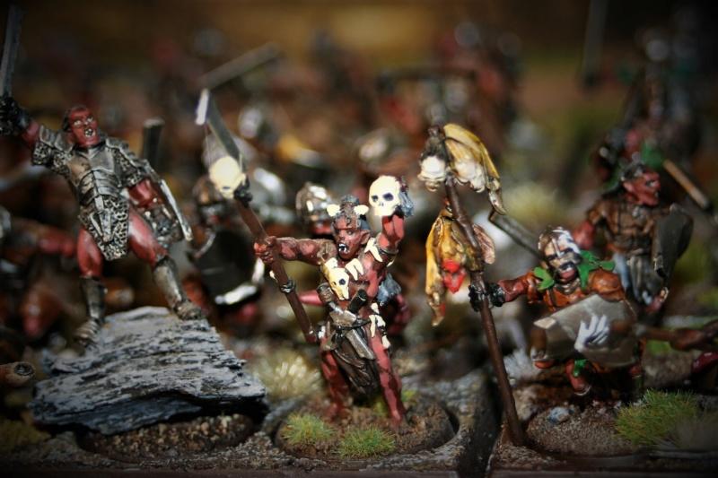 Sauron et ses 10 Armées - Update - Page 4 Img_6321