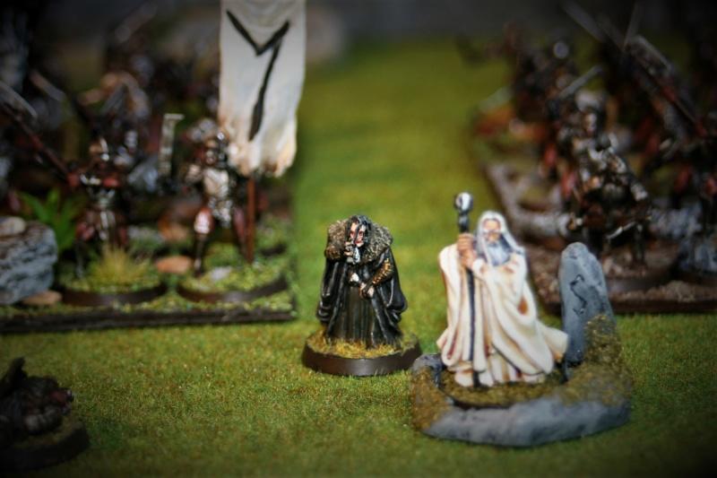 Sauron et ses 10 Armées - Update - Page 4 Img_6329