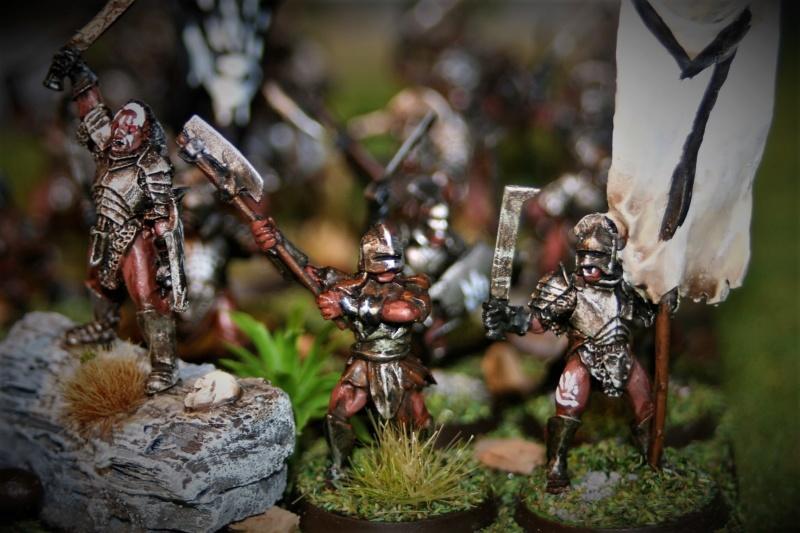 Sauron et ses 10 Armées - Update - Page 4 Img_6333