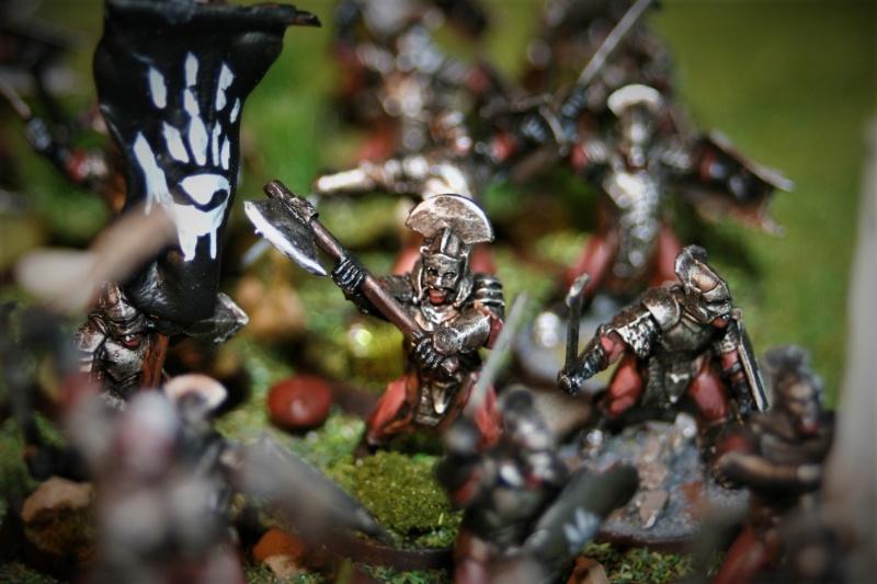 Sauron et ses 10 Armées - Update - Page 4 Img_6341