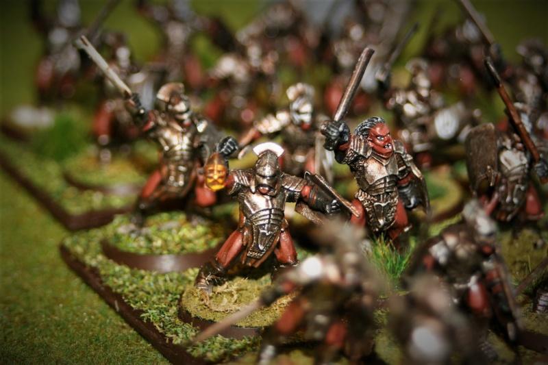 Sauron et ses 10 Armées - Update - Page 4 Img_6342