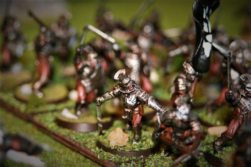 Sauron et ses 10 Armées - Update - Page 4 Img_6343