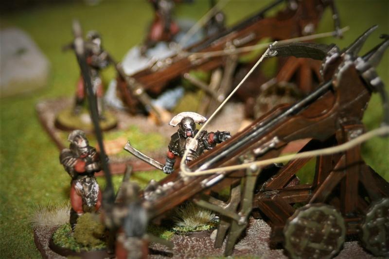 Sauron et ses 10 Armées - Update - Page 4 Img_6416