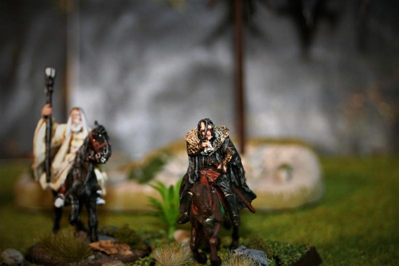 Sauron et ses 10 Armées - Update - Page 4 Img_6421