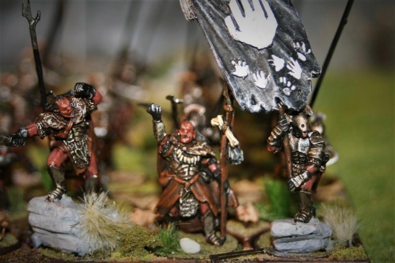 Sauron et ses 10 Armées - Update - Page 4 Img_6423