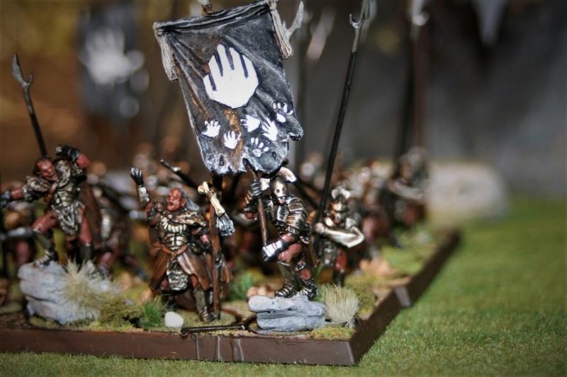 Sauron et ses 10 Armées - Update - Page 4 Img_6424