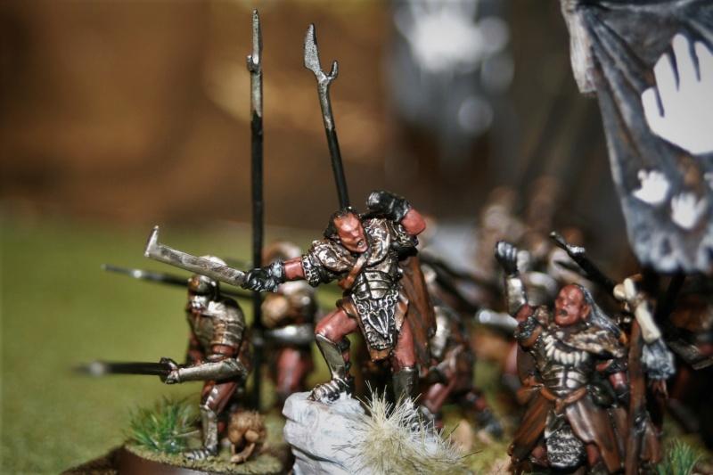 Sauron et ses 10 Armées - Update - Page 4 Img_6425