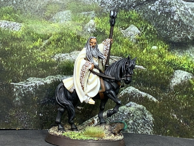 Sauron et ses 10 Armées - L' Armée de L'Immortel - Fin - Page 6 Img_7111