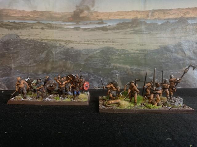 Sauron et ses 10 Armées - L' Armée de L'Immortel - Fin - Page 6 Img_7312