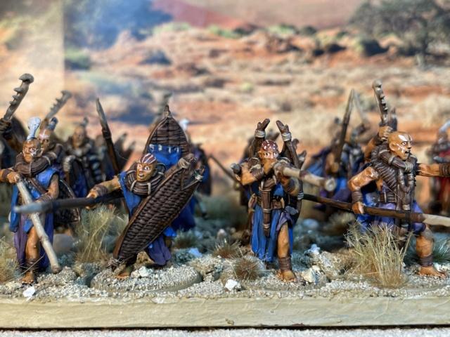 Sauron et ses 10 Armées - L' Armée de L'Immortel - Fin - Page 6 Img_7814