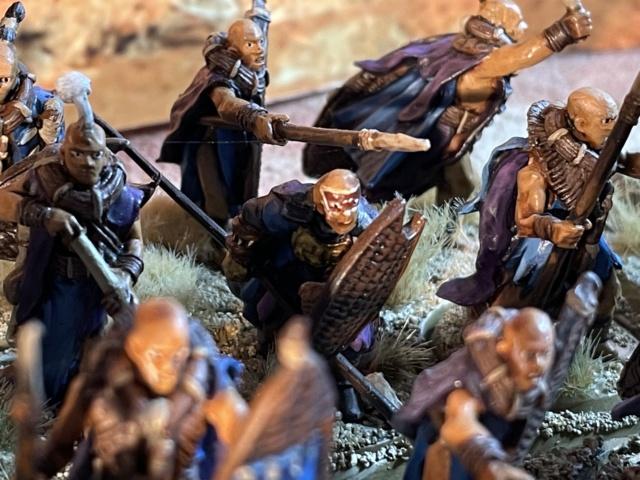 Sauron et ses 10 Armées - L' Armée de L'Immortel - Fin - Page 6 Img_7817