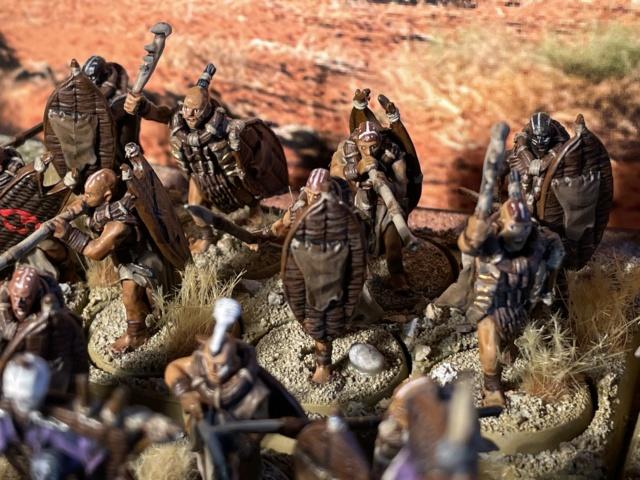 Sauron et ses 10 Armées - L' Armée de L'Immortel - Fin - Page 6 Img_7820