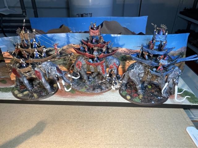 Sauron et ses 10 Armées - L' Armée de L'Immortel - Fin - Page 6 Img_7831
