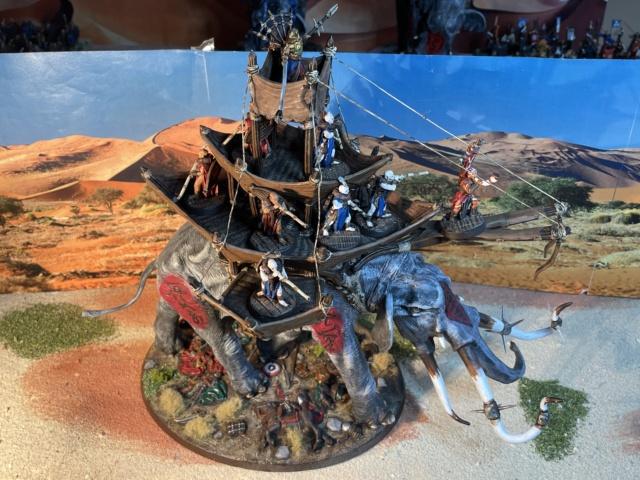 Sauron et ses 10 Armées - L' Armée de L'Immortel - Fin - Page 6 Img_7832