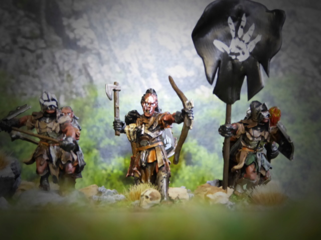 Sauron et ses 10 Armées - Update - Page 4 P1020110