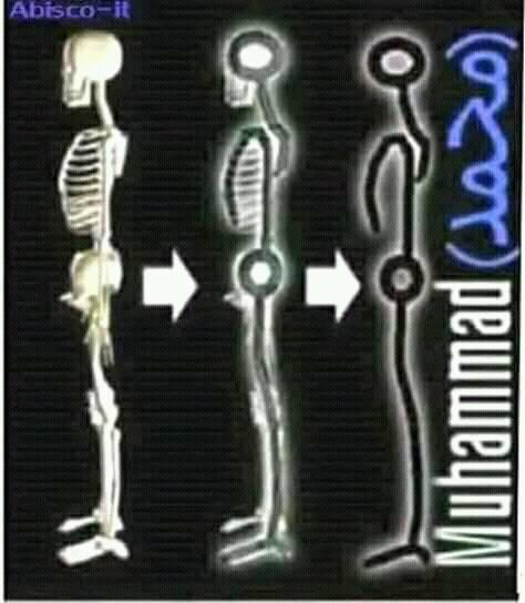 Le corps humain évoque le nom de Muhammed(SAWS) A_ayac10
