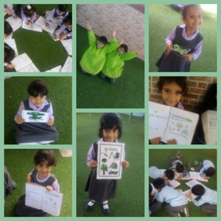 Teaching green colour Colla195