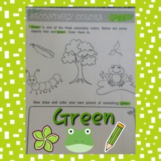 Teaching green colour Colla196