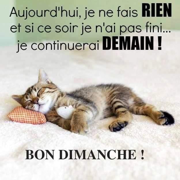 Bonjour - bonsoir - Page 70 Fb_img15