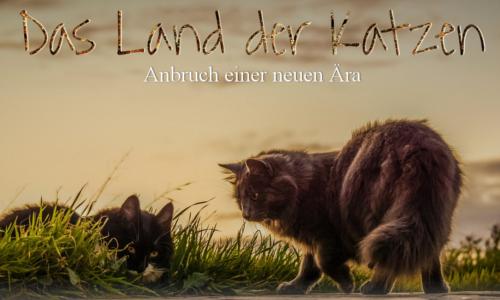 Land der Katzen Vorste10