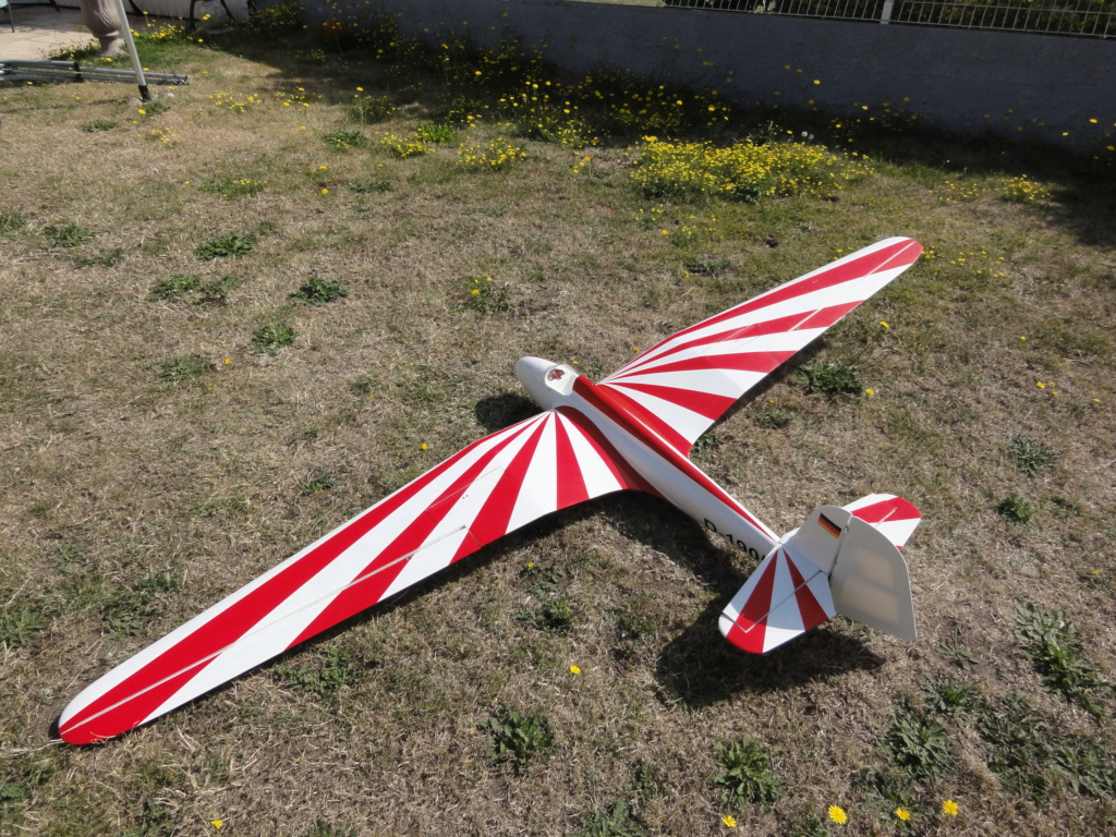 [VENDU] HABICHT 2M60   150 € prêt à voler!! Dsc02117