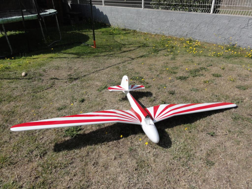[VENDU] HABICHT 2M60   150 € prêt à voler!! Dsc02118