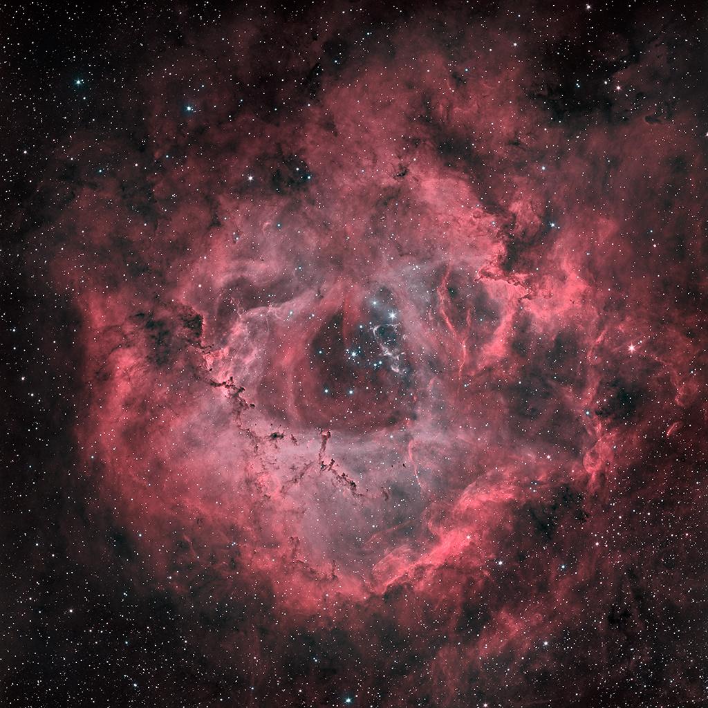 NGC2244 la suite : la version HOO 2020-010