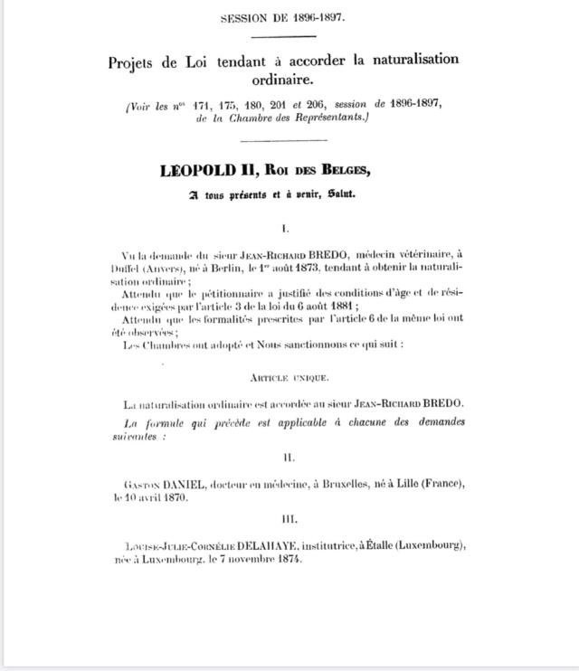 A la recherche de l'histoire du Zinnia 0a8b6f10