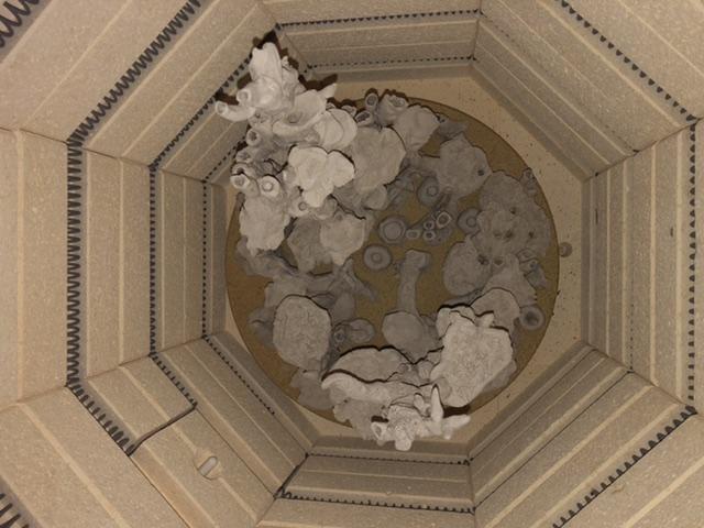 Micro récif en céramique «maison» d'Ogo  4d0a5f10