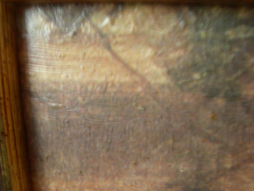 Reproduction d'un tableau de victor gilbert Dscn8114