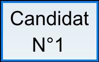 test d'élection a bulletin secret Cdt_111