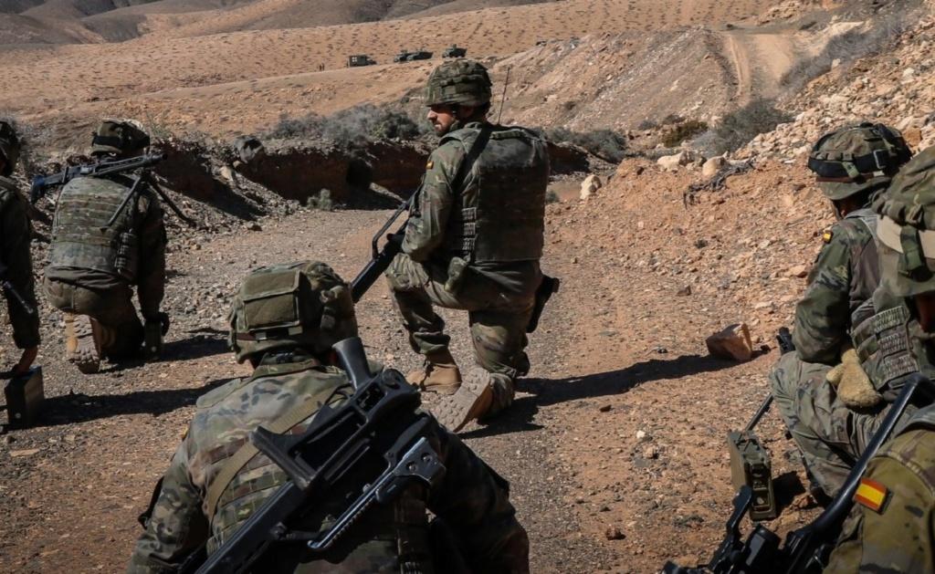 Armée Espagnole/Fuerzas Armadas Españolas - Page 16 20210210