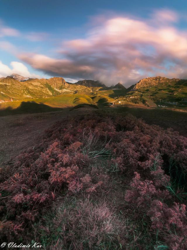 Les Alpes, l'été... 50573710