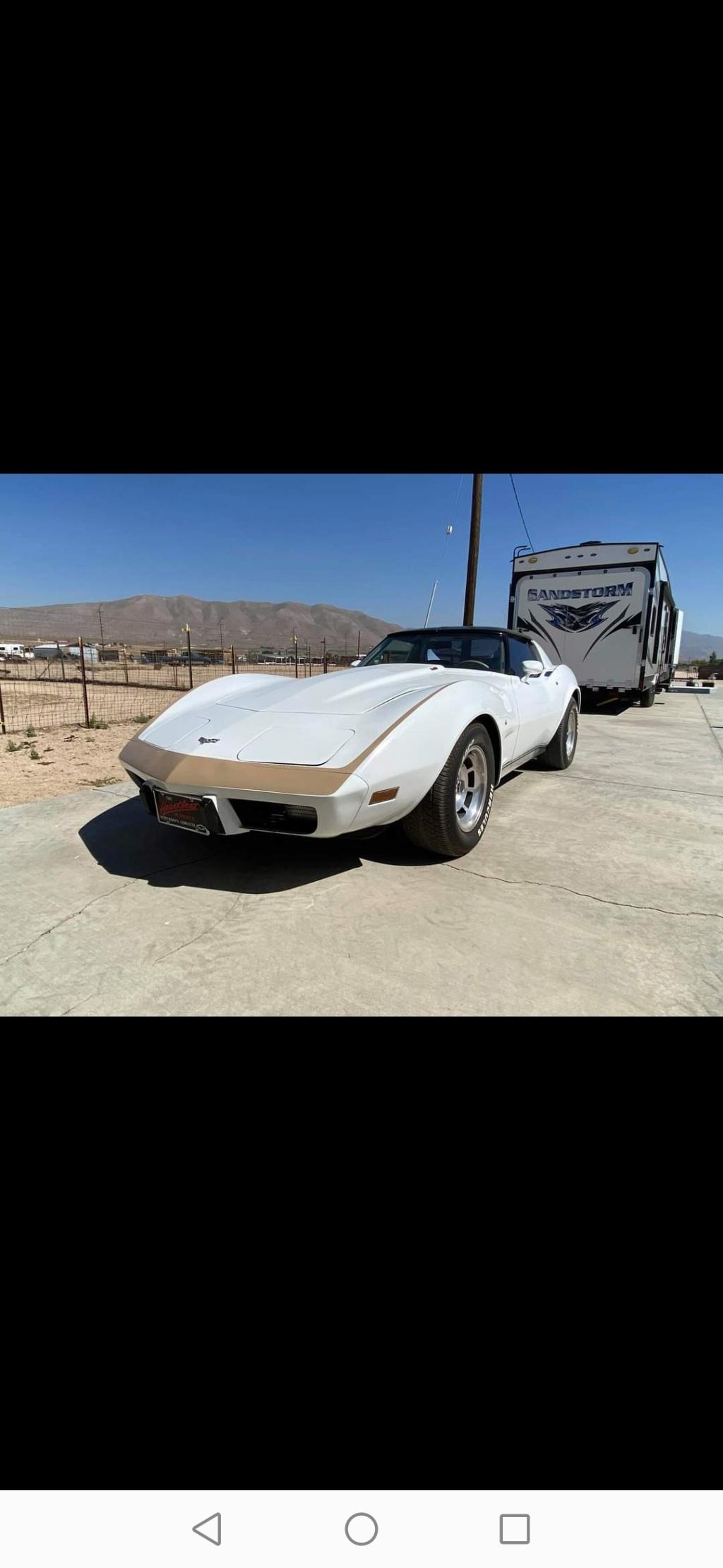 Corvette c3 1977 Screen11
