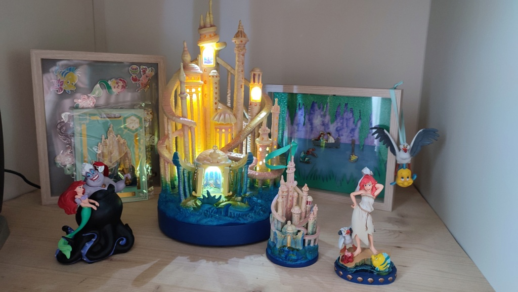 The Disney Castle Collection - Page 44 Img_2014