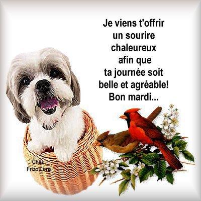mardi 19 mars 2013 Bon-ma10