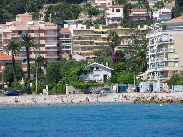 Urginea maritima, l'oignon de mer, une méditerranéenne vraie Ma_mai10