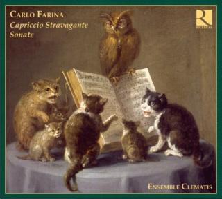 Ensemble Clematis 6_285-10