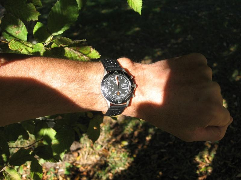 Feu de vos montres de pilote automobile - Page 4 Sinral10