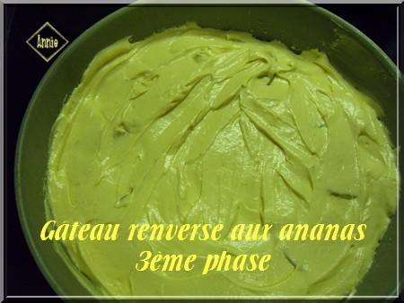 Gâteau renversé aux ananas (photos) 2009_011