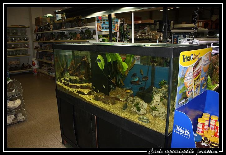 zoo boutic Img_0916