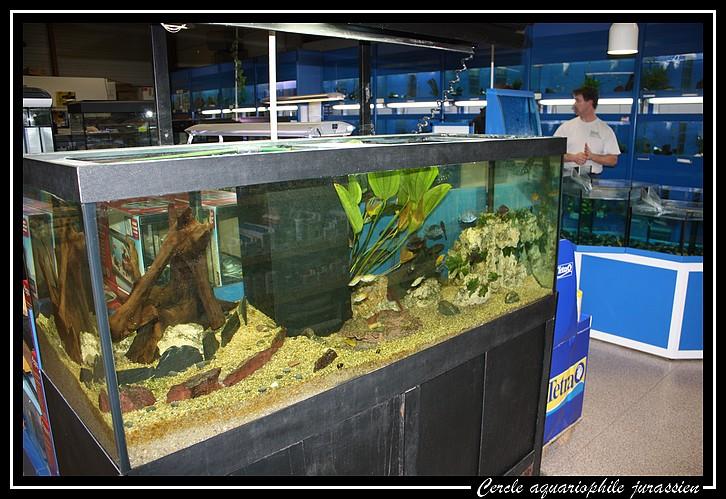 zoo boutic Img_0917