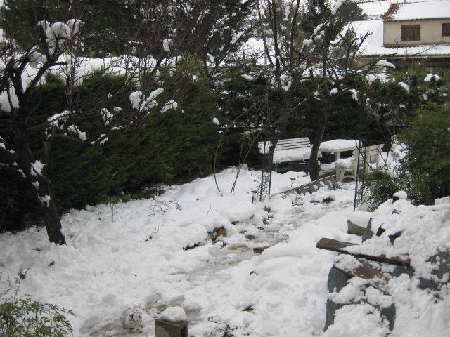 La neige Img_0310