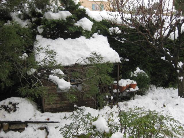 La neige Img_0311