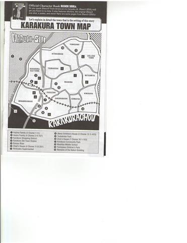 Les tomes de Bleach Map10