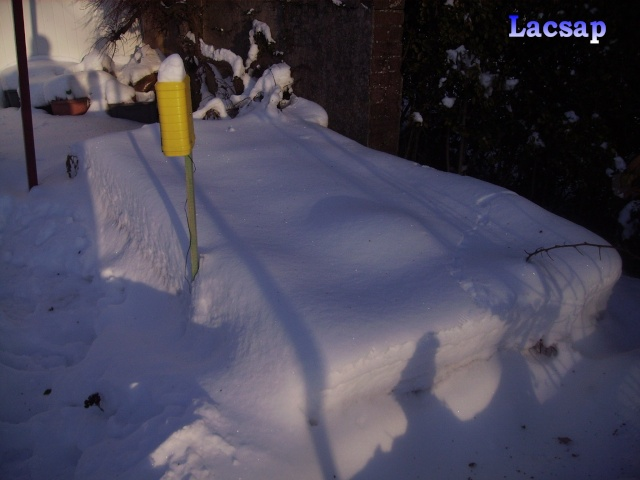 Protection hivernales en BEL et relevé température 2010-2011 Bxx_2510