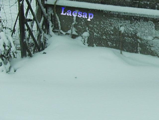 Protection hivernales en BEL et relevé température 2010-2011 Femell17
