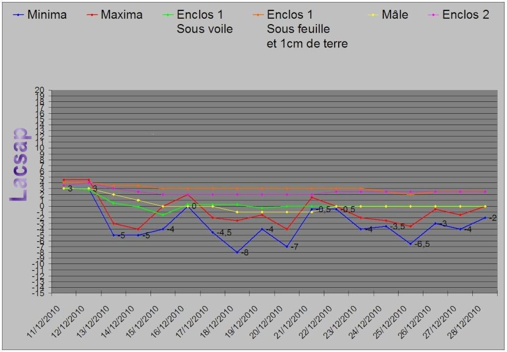 Protection hivernales en BEL et relevé température 2010-2011 Graph_19