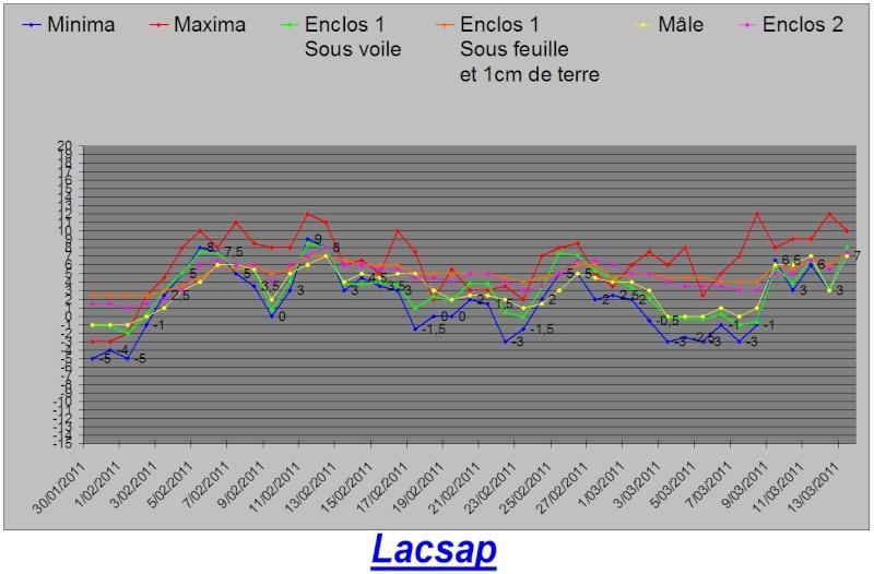 Protection hivernales en BEL et relevé température 2010-2011 Graph_21