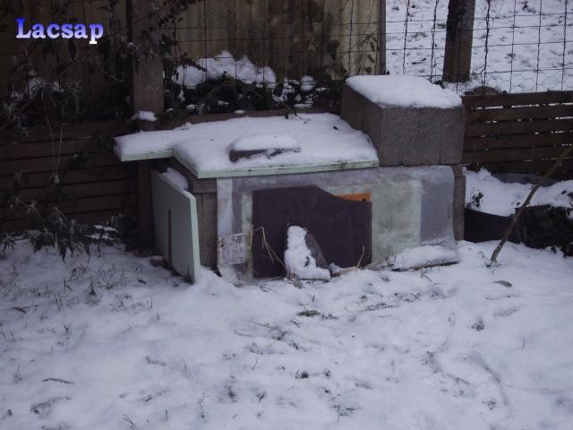Protection hivernales en BEL et relevé température 2010-2011 Male_010